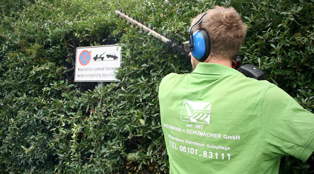 Grünpflege und Heckenschnitt durch Bachmann + Schumacher GmbH